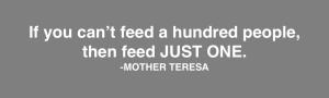 Teresa - Feed